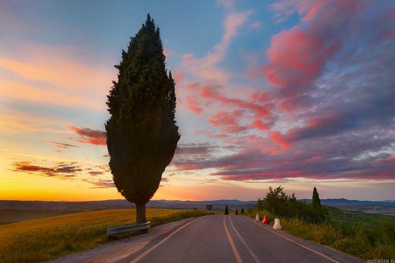 пейзаж, тоскана, италия, ландшафт, travel, landscape, tuscany, toskana, italy, nature Закат в Тосканеphoto preview