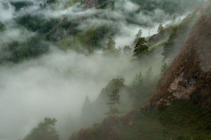 Поднимается туман.photo preview