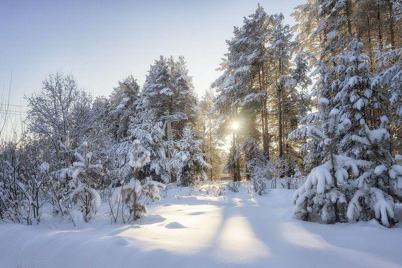 зима, снег, солнце, закат, сугробы, мороз, деревья Кто устал от жарких дней, в -20 поскорей)))photo preview