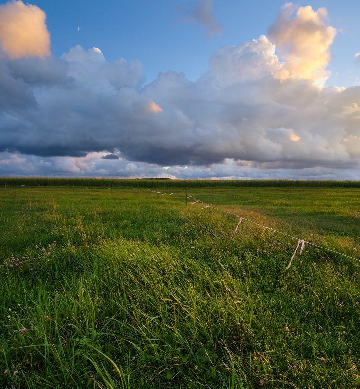 вечер, облака, свет, Луна, луг, канал, лето, шторм, ветер, закат, sunset, field, grass, summer, storm, evening, light, panorama Штормовой вечер ..photo preview