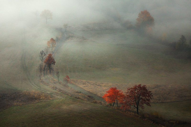 landscape,canon,mist,light,autumn Daydreamingphoto preview