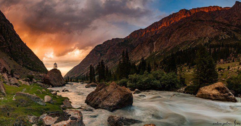киргизия, закат, горы, небо, Про маленькое, но очень гордое деревоphoto preview