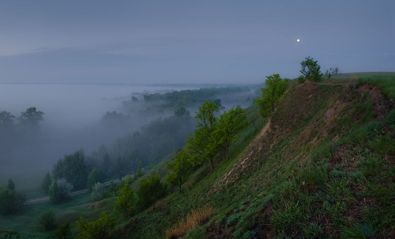 перед рассветом, синий час, панорама, туман, утро, холмы, долина, река, псел, луна, morning, before sunrise, moon, fog, misty, panorama, wide angle, river, hills, blue hour, psel, ukraine Ночь отступает ...photo preview