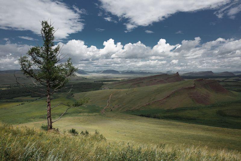 хакасия, пейзаж, хайкинг, енисей, абакан, красноярское море, красивый, холмы, боград, лето, утро Сундукиphoto preview