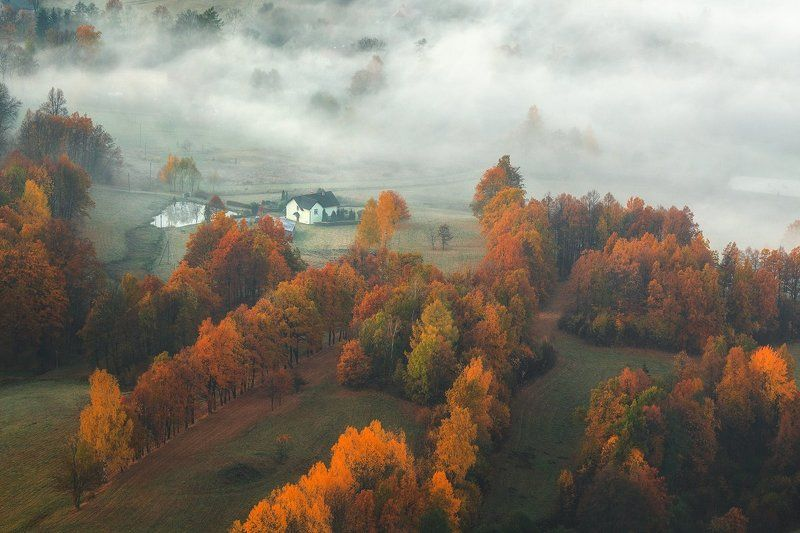 landscape,canon,mist,light,autumn Early Morning.photo preview