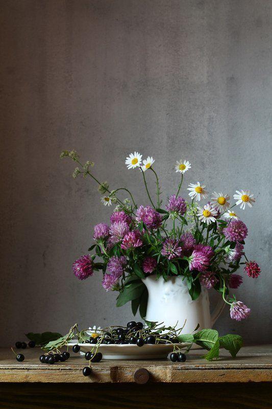 натюрморт, лето, ягода, черемуха, цветы, клевер, ромашки Со спелой черемухойphoto preview