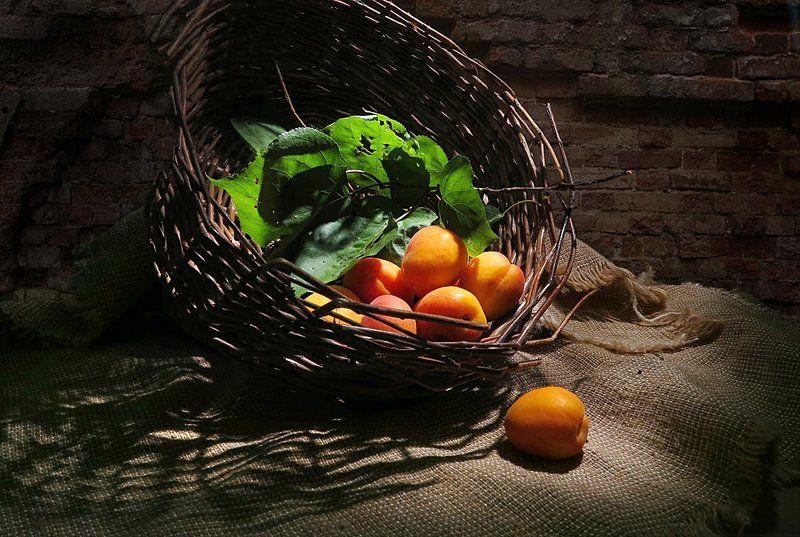 корзина,абрикосы,мешковина Сладкие абрикосыphoto preview