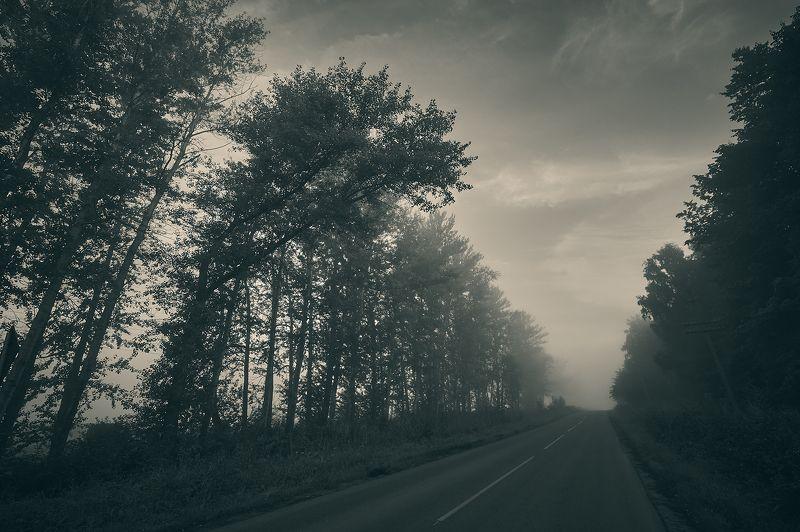 Дорога в Никудаphoto preview