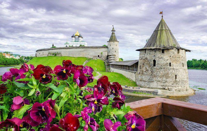 псков, троицкий собор, лето, цветы Лето в Псковеphoto preview