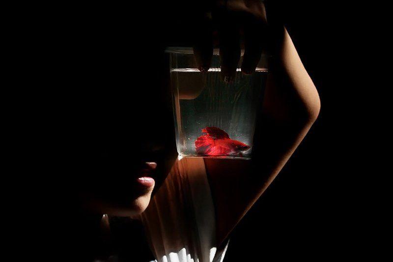 свет, рыбка, человек ...photo preview