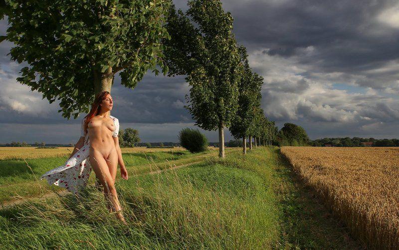 tree, field, summer, nude Abends am Baumphoto preview