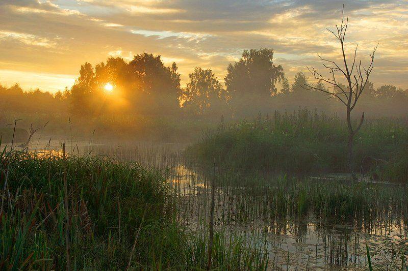 рассвет, река истра Подмосковный рассветphoto preview