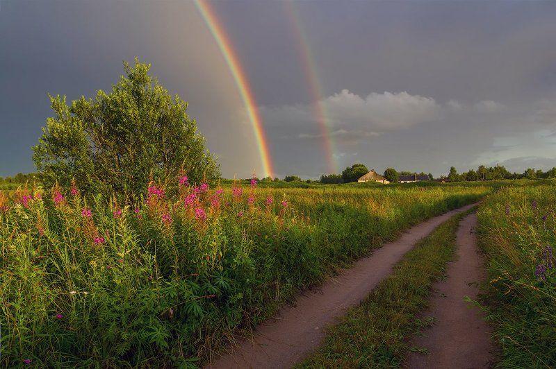 радуга вечер поле дорога деревня лето радужный вечерphoto preview