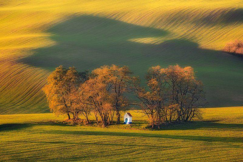 landscape,canon,light,autumn Autumn Perspectivephoto preview