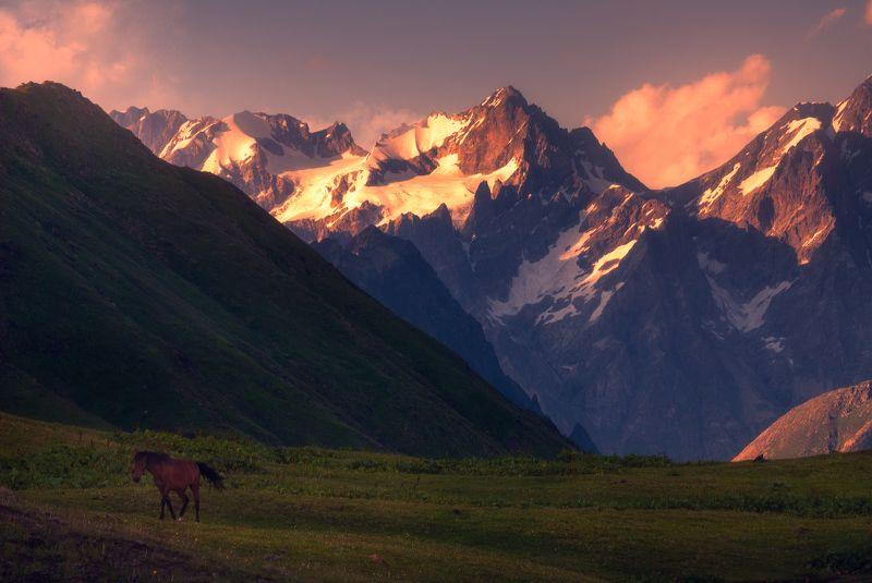 В горах Сванетииphoto preview