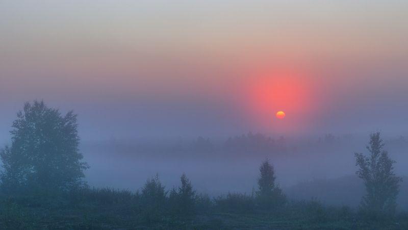 ямал , сибирь, природа, салехард , рассвет, ямал ,туман ,  пейзаж \