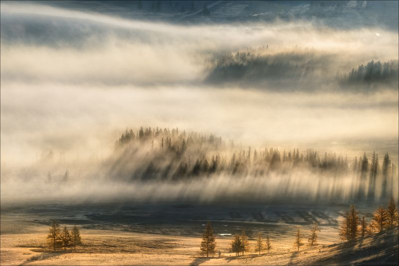 алтай, горы, осень, курай, курайская степь, солнце, утро, свет, туман Утро в Курайской степи ..photo preview