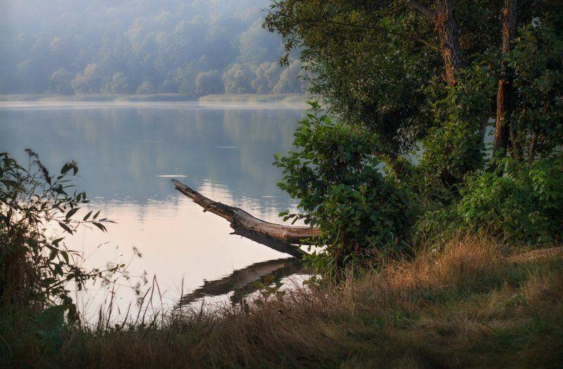 рассвет, озеро, лес, дымка, На берегу озераphoto preview