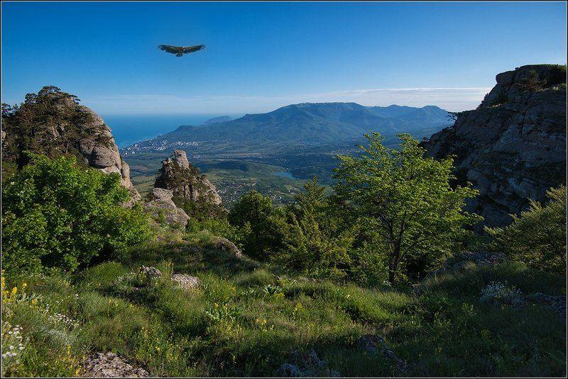 крым, демерджи, б.сипы, соколы Над долиной приведенийphoto preview