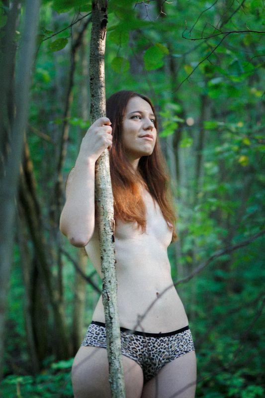 ню, nu, nude, nu-art, art-nu, ню-арт,  арт-ню, обнаженная, голая, девушка, girl, модель, model, лес, forest, природа, nature Еленаphoto preview