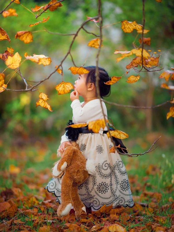 girl, kid, leaf, eyes, cute, curious, face, autumn, leaves, field hello Mr. leafphoto preview