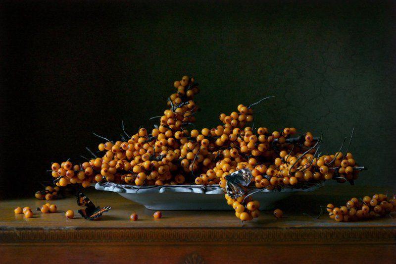 натюрморт, ягоды, облепиха Облепихаphoto preview
