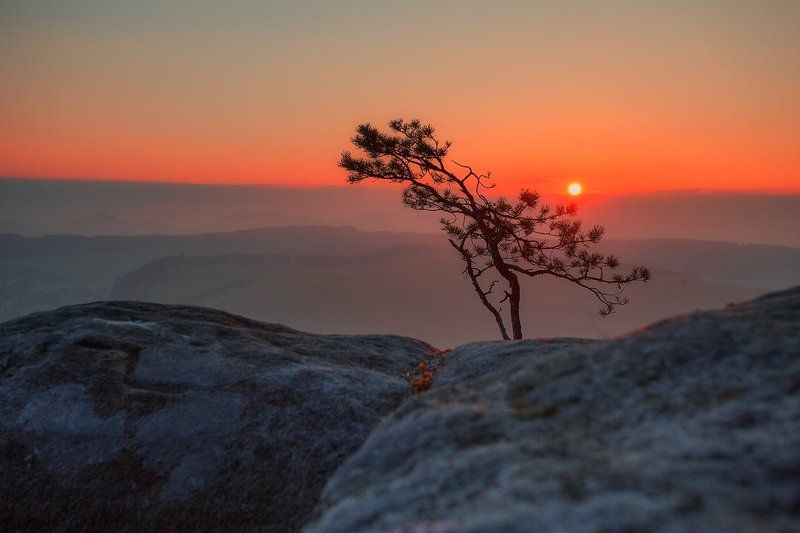 landscape,canon,winter Stillness Sets Inphoto preview