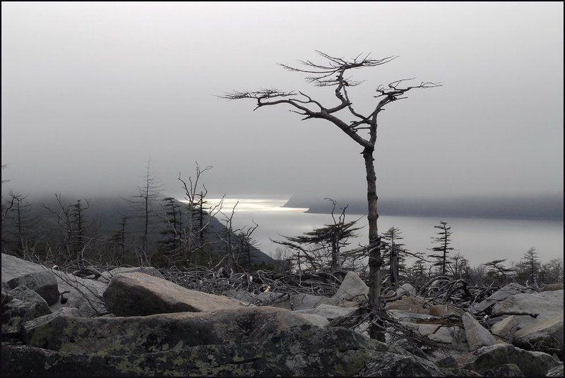 магадан, нагаевская бухта Там, за туманами...photo preview