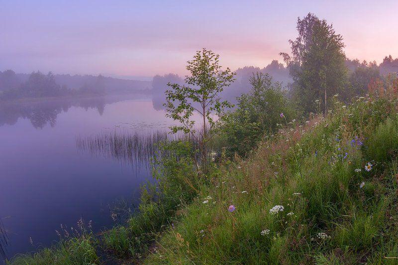 туман река вечер про тихий вечер и сиреневый туманphoto preview