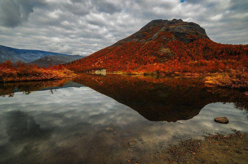 хибины, осень, кольский, кировск Осенняя.photo preview