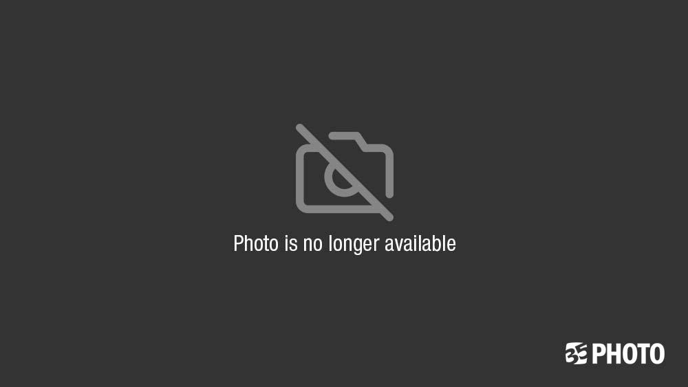 лето, утро, река, деревня photo preview