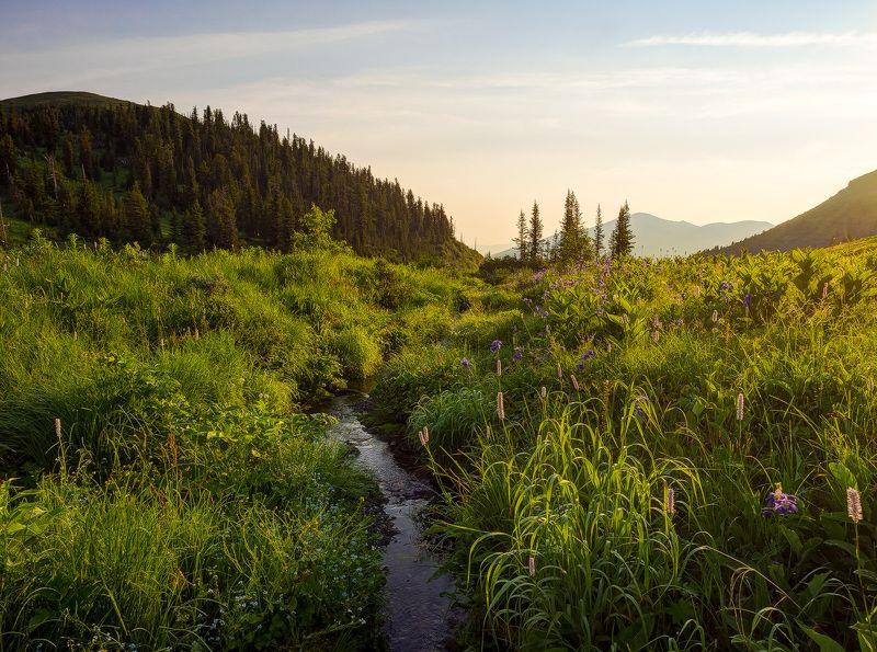 ...Утро на перевале...photo preview