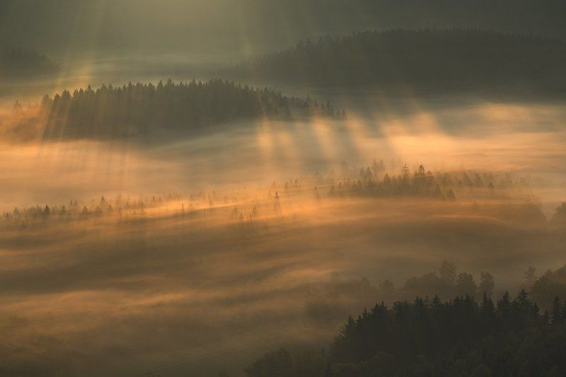 landscape,canon,mist,light,autumn Whispers in the Windphoto preview
