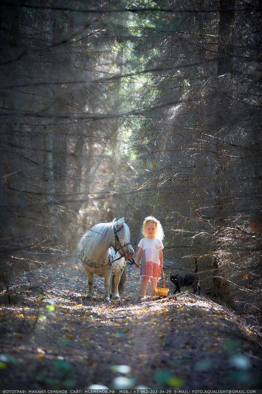 horse Как Варвара в сказку ходилаphoto preview