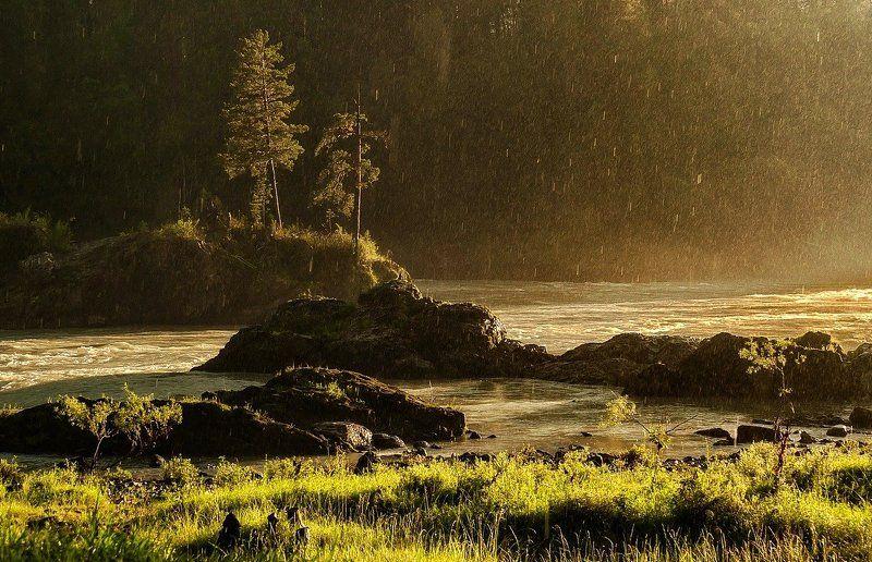 Летний дождь.photo preview