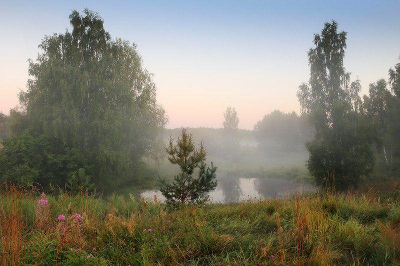 комары урочище утро туман Комарыphoto preview