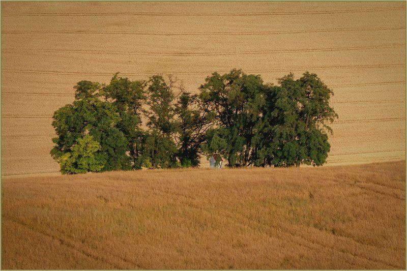 svatá barborka,чехия,южная моравия,часовня,лето,kaplička Svatá Barborka.photo preview