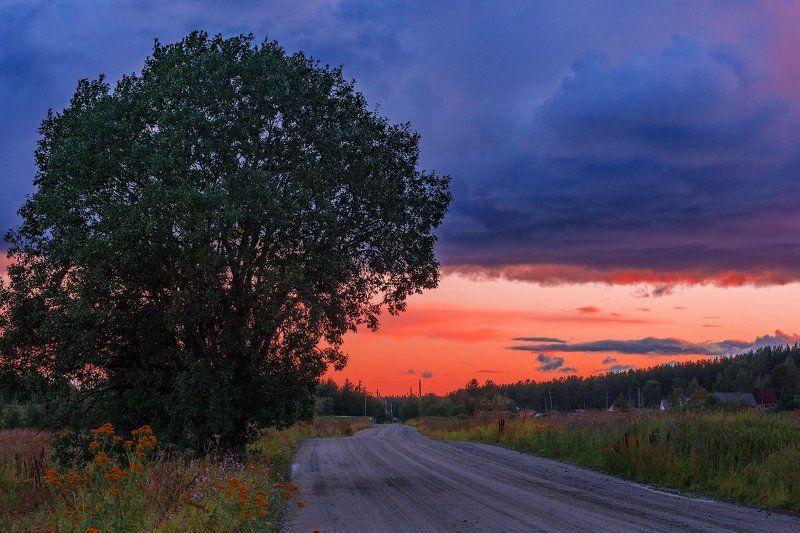 север, кольский, хибины, заполярье, имандра,лето, Вечерняя.photo preview