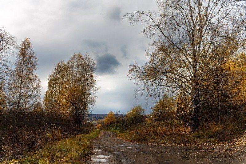 осень * * *photo preview