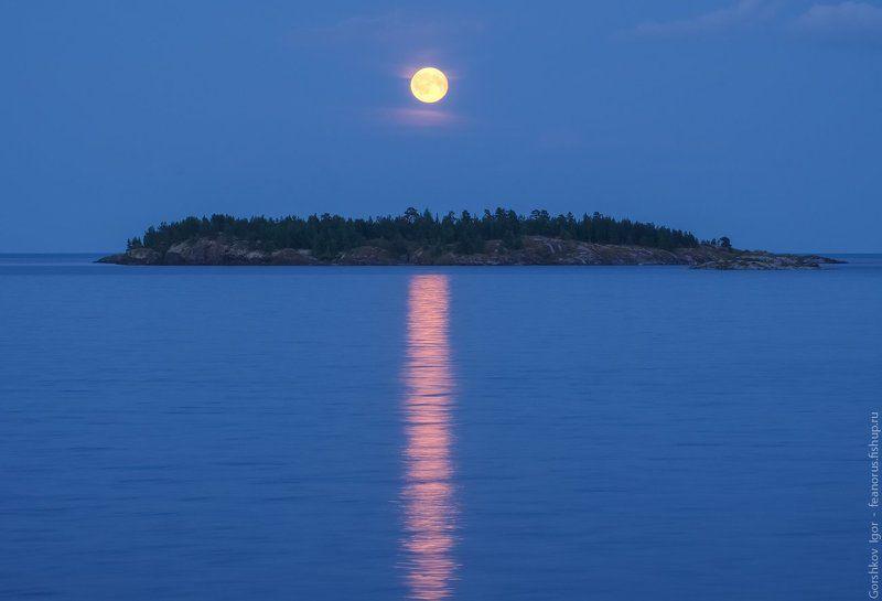 ладога,пейзаж,природа,вечер,луна, остров,россия,озеро,небо,полнолуние,ночь Полнолуние над Ладогойphoto preview