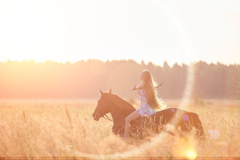 horse На восход!photo preview