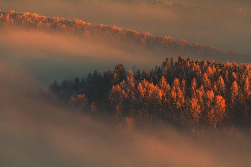 landscape,canon,winter,sunrise First Lightphoto preview