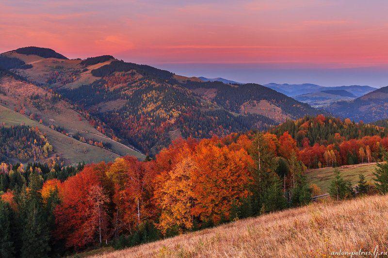 рассвет, туман, карпаты, горы, осень Осеннее пламя Карпатphoto preview