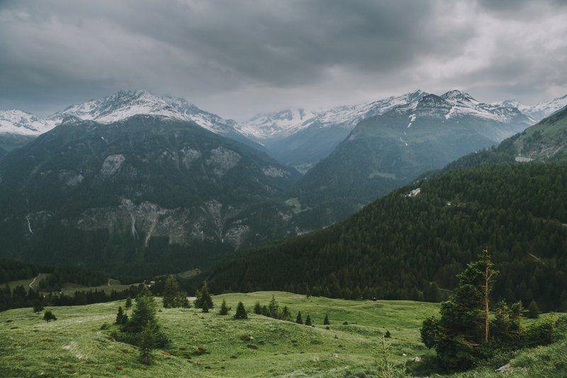 Ускользало альпийское летоphoto preview