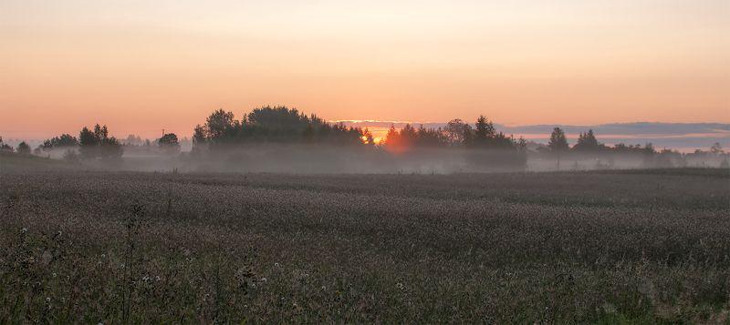 sunrise,fields,fog,summer Sunrise...photo preview