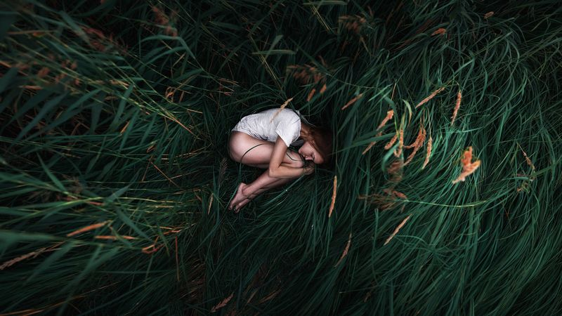Grass •photo preview