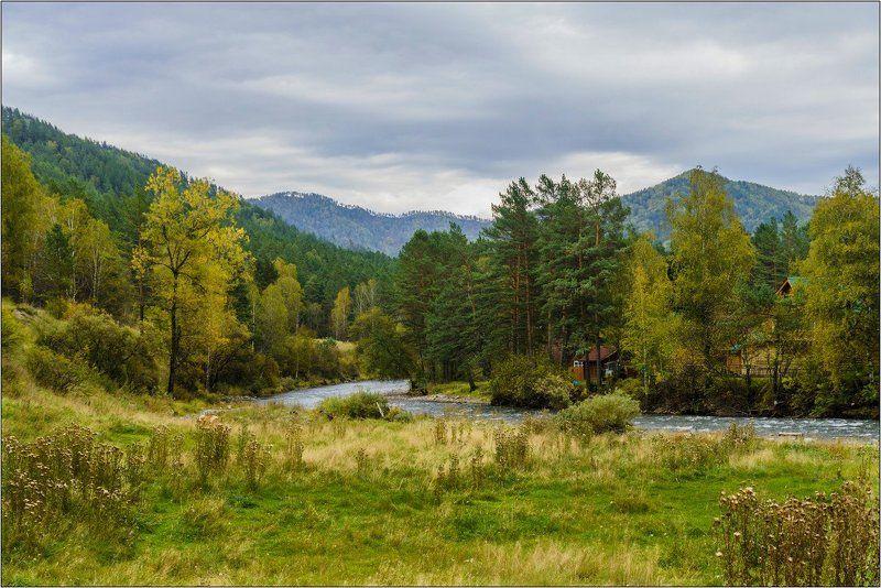 пейзаж, осень, река, Горный Алтай  У реки. photo preview