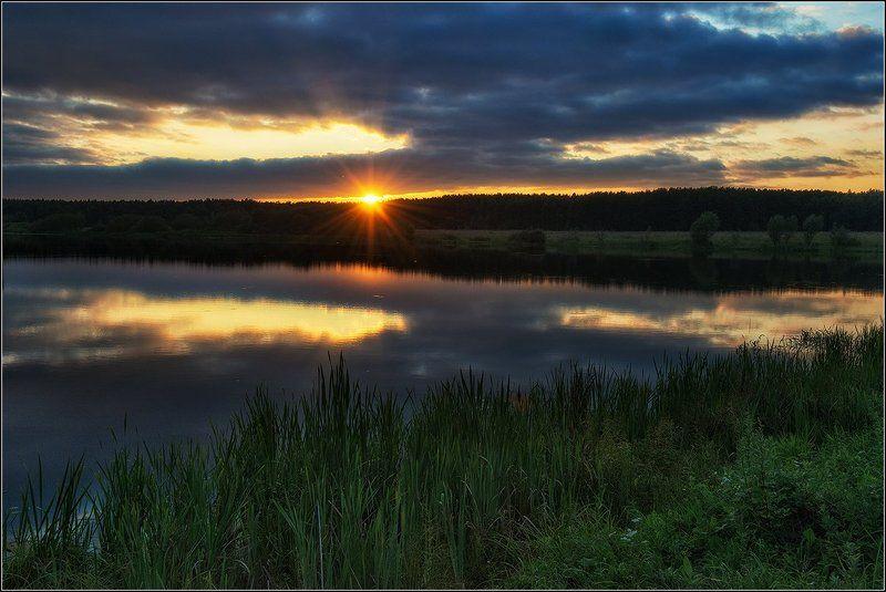 лето, вечер, пруд, солнце, отражение, лес *  *  *photo preview