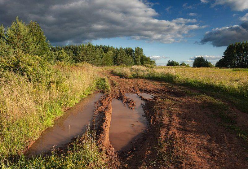 Дорога колея вода проселок трава лес поле облака лето Удмуртия Лесная дорогаphoto preview