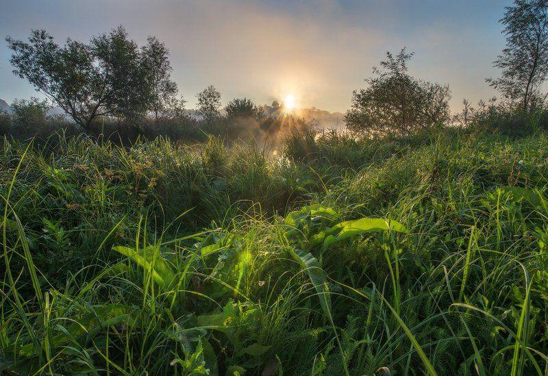 Солнце сентября....photo preview